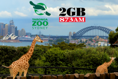 Christmas at Taronga Zoo