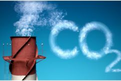 No link between C02 and climate change