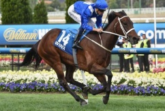 Will Winx retire? Chris Waller all but confirms the mighty mare's future