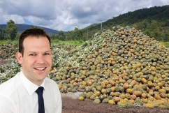 Golden Circle accused of 'abusing the situation' as tonnes of pineapples go to waste