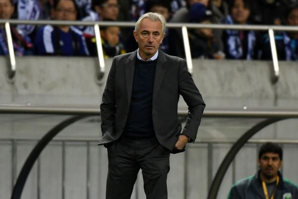 Article image for Former Socceroo says new coach is just a 'European replacement'