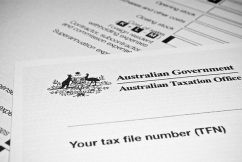 ATO targeting small business, 'This is a harrowing, horrible experience'