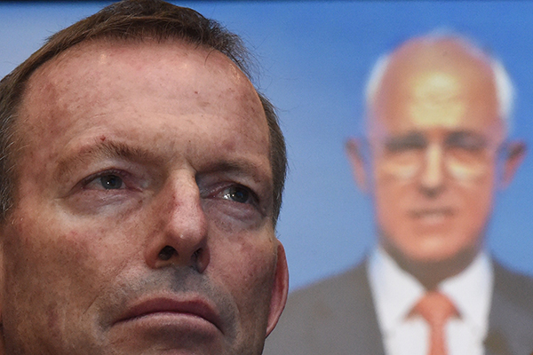Article image for Tony Abbott: Malcolm Turnbull can win the next election