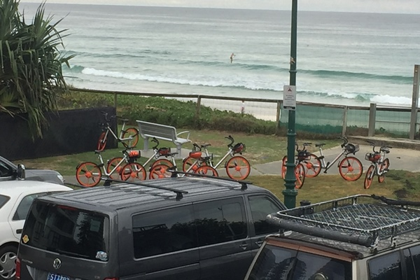 Article image for Queensland hit by botched share bike scheme