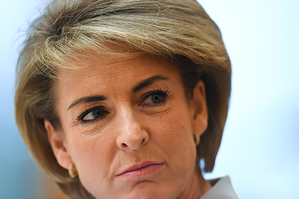 Article image for Liberal senator says Labor unleashed 'unrelenting campaign' on Michaelia Cash
