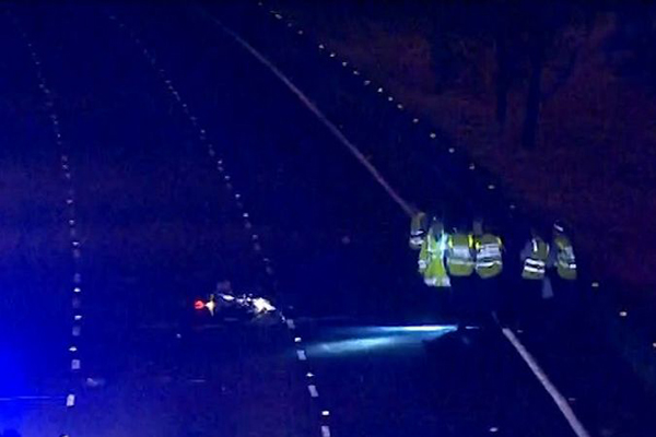 Article image for Motorcyclist and kangaroo killed in freak accident