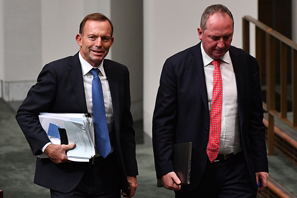 Article image for 'He still has quite a bit more to give to our country': Tony Abbott backs Barnaby revival