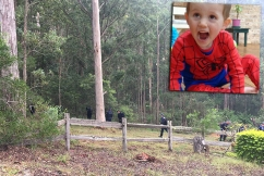 Police scouring bushland in fresh William Tyrrell 'forensic search'