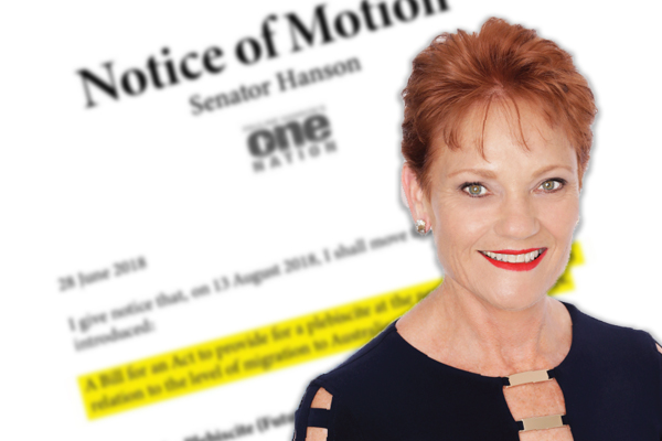 Article image for 'We're simply not coping': Andrew Bolt weighs in on One Nation push for immigration plebiscite