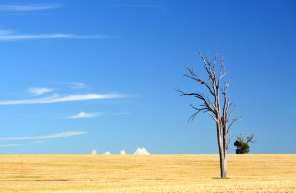 Article image for 'We're not water poor, we're vision poor':  Michael McLaren continues push for drought future fund