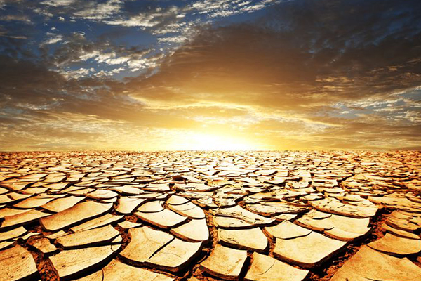 Article image for El Nino weather could affect Australian agriculture industry
