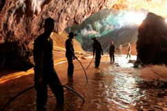 Saving the Wild Boars – inside the Cave