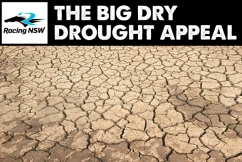 Racing NSW makes huge donation to #TheBigDry drought appeal