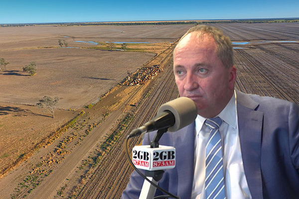 Article image for 'We can't survive!': Farmer's desperate plea to Barnaby Joyce ahead of drought summit
