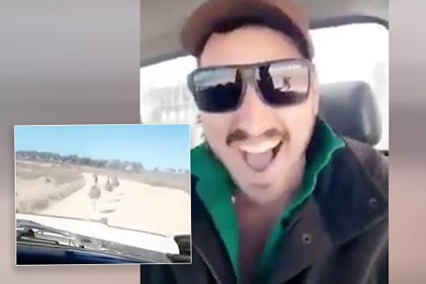 Article image for 'It's appalling': RSPCA investigating after man is videoed laughing while mowing down emus