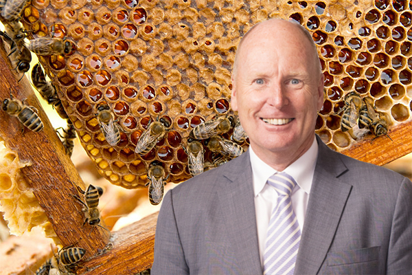 Article image for Conflict of interest in Aussie honey scandal