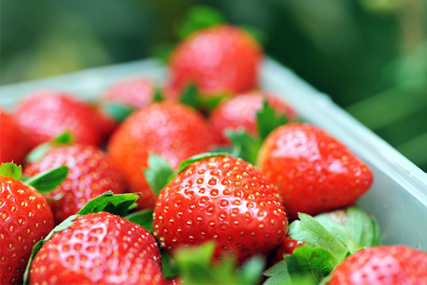 Article image for 'We can't let the saboteurswin': Alan Jones calling on Australians to buy strawberries