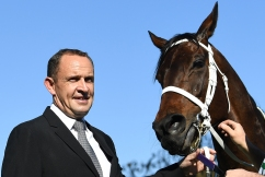 'It will take a champion to beat her': Chris Waller confident Winx will make history… again
