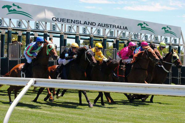 Article image for Queensland races cancelled due to strike action