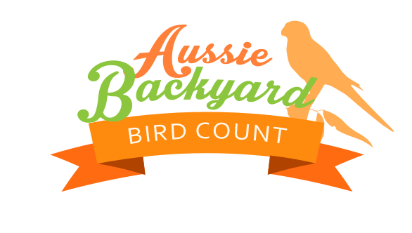 Article image for The Aussie Backyard Bird Count