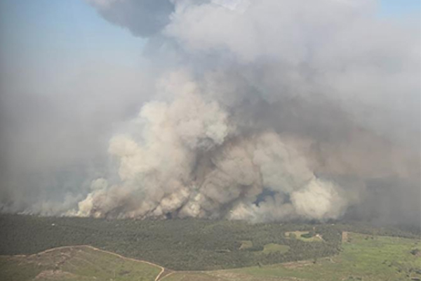 Article image for Katter says Palaszczuk government contributed to devastating bushfires