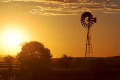 State government's outback tourism injection 'a little disingenuous', says Robbie Katter