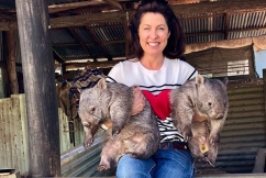 'My job's not normal': New podcast shares incredible stories from the outback