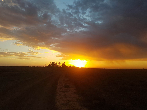 Article image for Beautiful sunrise photos as temperatures set to soar in the bush
