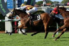 Qld trainers say the Winter Carnival is not in crisis