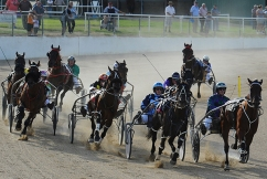 'Issues of integrity': QLD racing industry needs overhaul, says Shadow Minister
