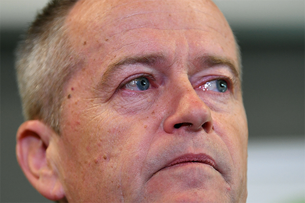 Article image for 'Very upsetting and traumatic': Anthony Albanese defends Bill Shorten