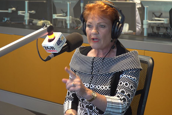Article image for Pauline Hanson slams 'international vultures' buying Australia