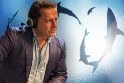 Karl Stefanovic challenges QLD government over the removal of shark drumlines