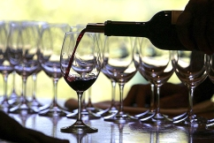 Wine industry's biggest ever USA promotional tour