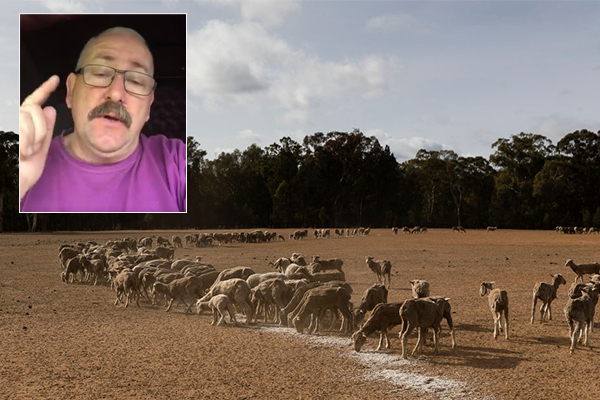 Article image for Generous truckie hatches plan to help our farmers