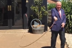 WATCH | Alan Jones tries his hand at whip cracking
