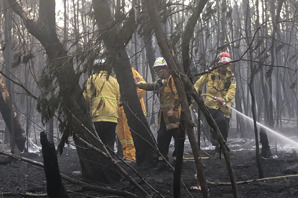 Article image for 'These fires are suspicious': RFS Deputy Commissioner's astonishing revelation