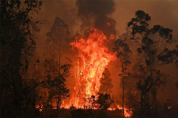 Article image for Bushfire emergency: The worst is yet to come as 'catastrophic' conditions forecast
