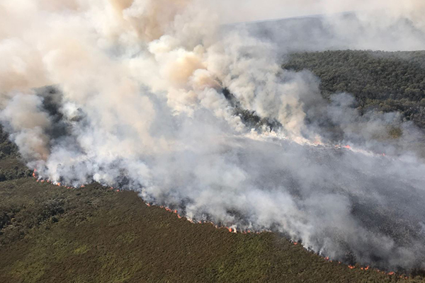 Article image for Brisbane swelters as fires rage across the state