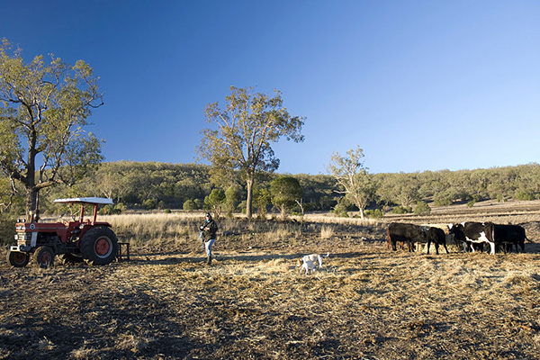 Article image for 'Inexplicable': Hundreds of QLD farmers left without support for months