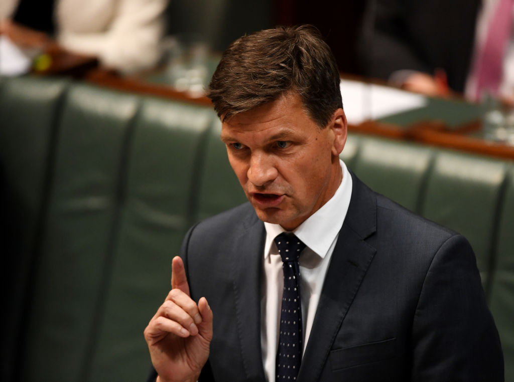 Article image for 'Absolute rot': Energy minister defends emissions reduction numbers