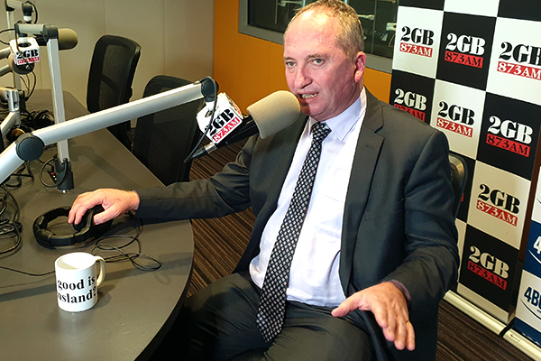 Article image for Barnaby Joyce warns taxes will rise with further coronavirus stimulus