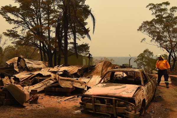 Article image for 'We need all hands on deck': Backpackers called in to bushfire recovery effort