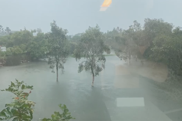Article image for WATCH | Ray Hadley films flooding at 4BC studios