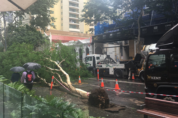 Article image for Brisbane CBD street closed as wild weather continues to wreak havoc