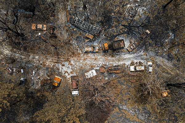 Article image for 'No one can really withstand this': Bushfire recovery stalls amid coronavirus outbreak
