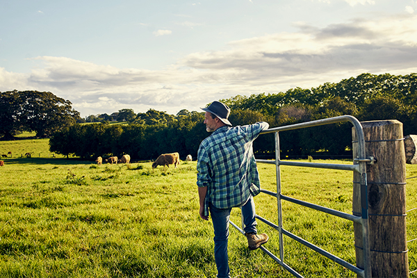 Article image for How your next holiday could help out a farmer too