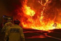 Land clearing needed to stop future bushfire crisis