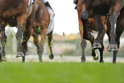 The 'surreal' look of the Melbourne Cup from a jockey's perspective