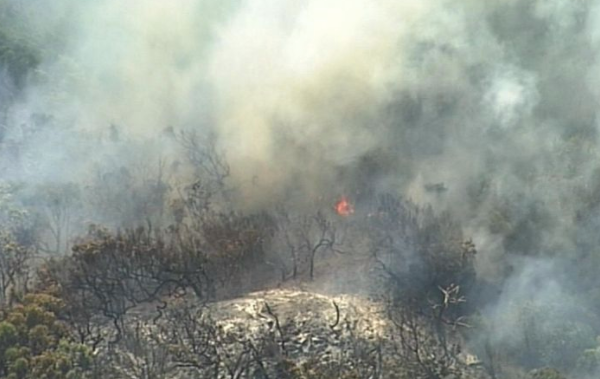 Article image for State Opposition hits out at fire response on Fraser Island